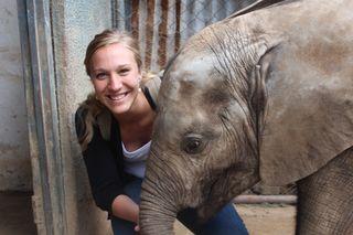 Mork, Quinlyn elephant Ghana 2013 small